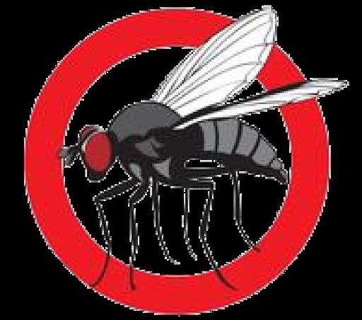 Hướng dẫn cách làm bẫy ruồi đơn giản bằng trái cây tại căn hộ