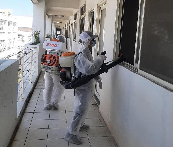 Công ty Diệt mối và côn trùng Đại Toàn Việt